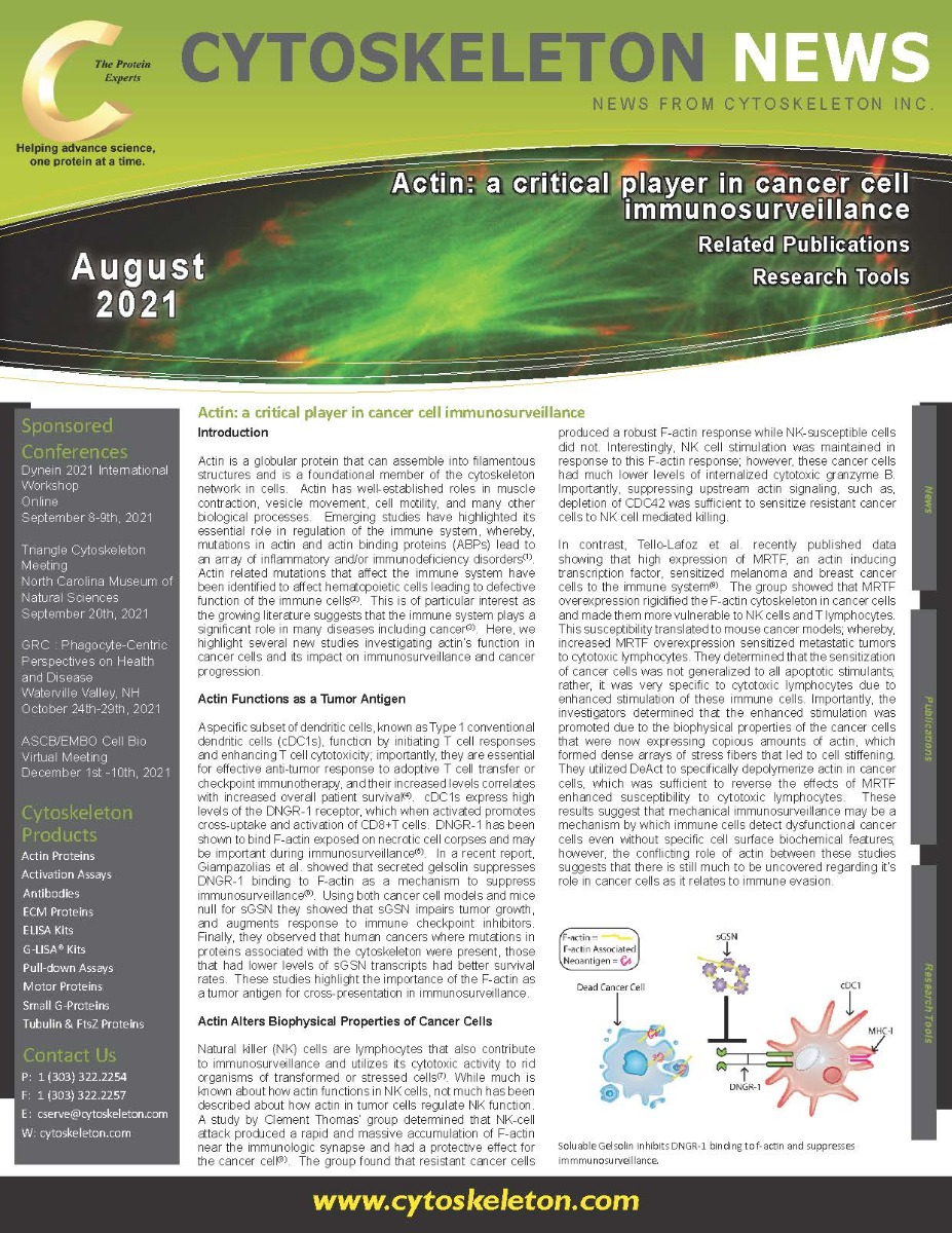August_Newsletter_-_Actin_Page_1_1