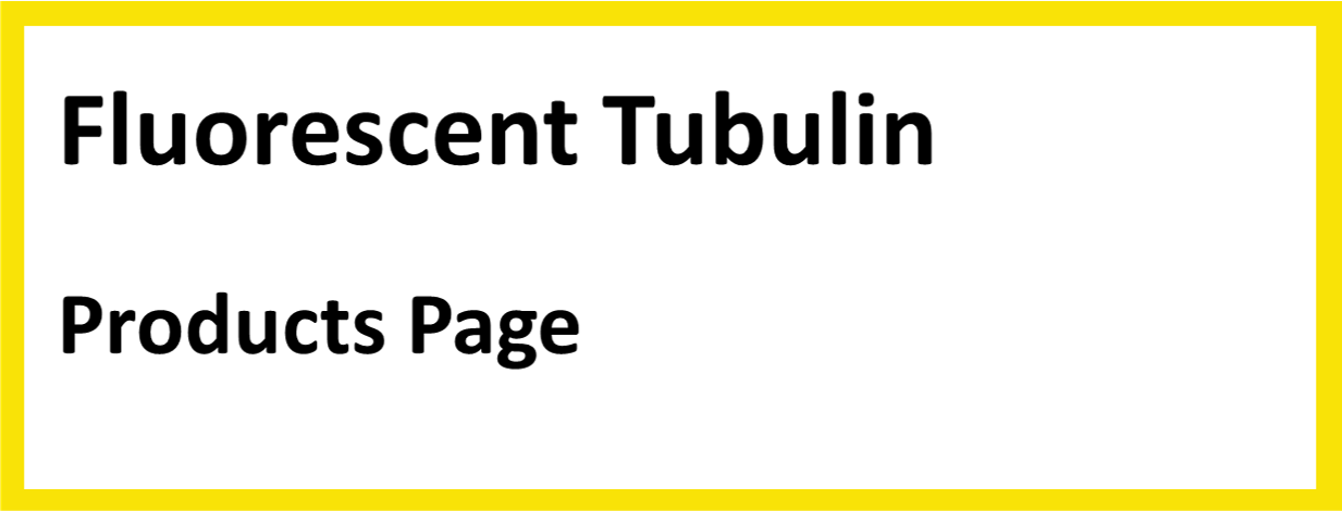 Fluorescent_Tubulin-products