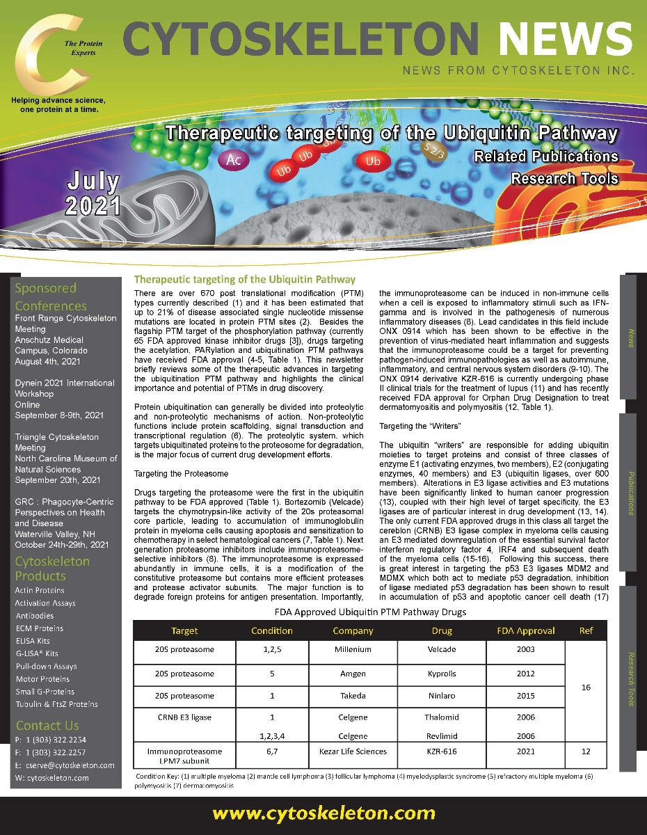 July_Newsletter_-_Signal_Seeker_Ubiquitin_Pathway_v2_Page_1