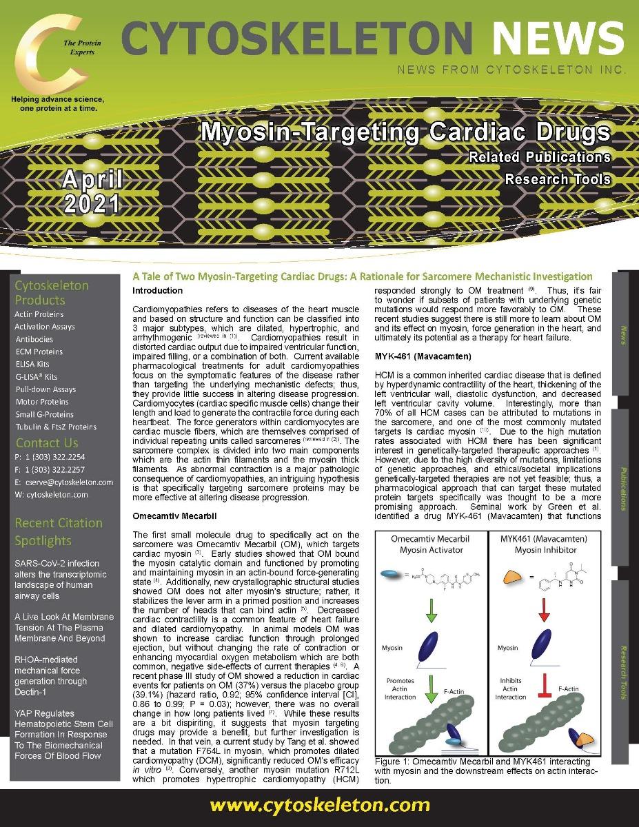 Myosin_Drugs_Custom_Related_April_2021_v2_Page_1