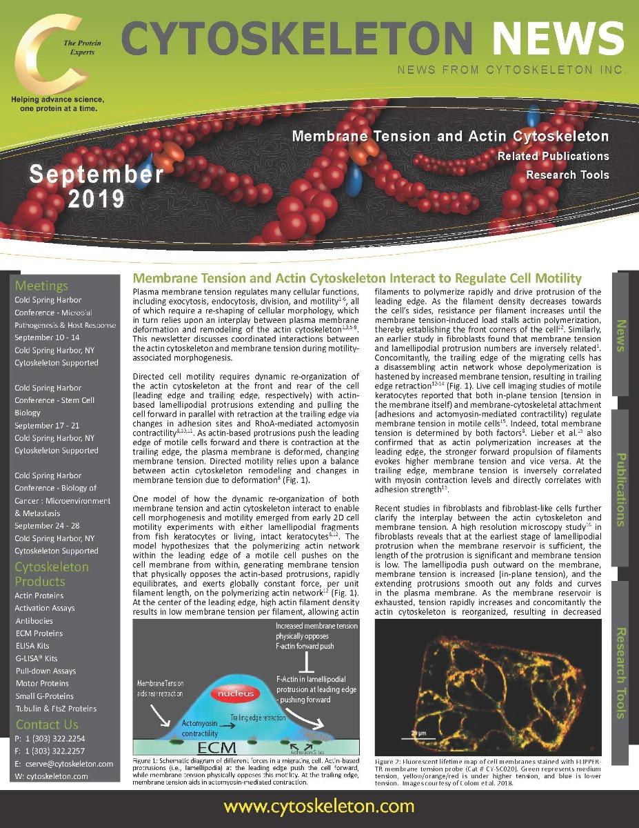September-Newsletter-Thumb_Page_1