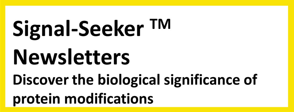 Signal-Seeker_Newsletter_1-1