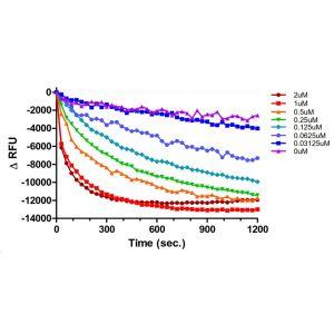 RasGRF1 GTP-Exchange plot