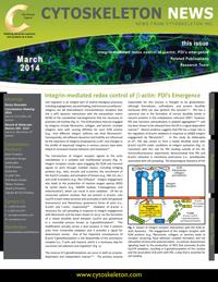 Integrin-mediated redox control of beta-actin: PDI's Emergence