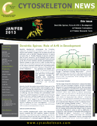 Arf-2013-Newsletter-3