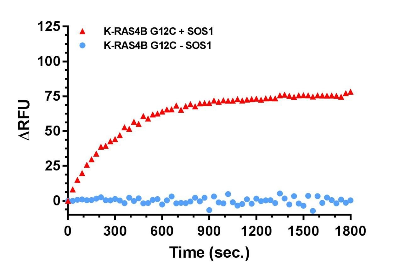 GTP-exchange assay with KRas4B G12C and SOS1