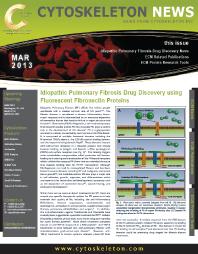 Fibronectin matrix assembly