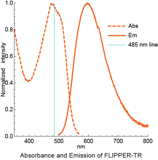 Fluorescence_spectra_Flipper-TR_exciation_and_emission_absorbance