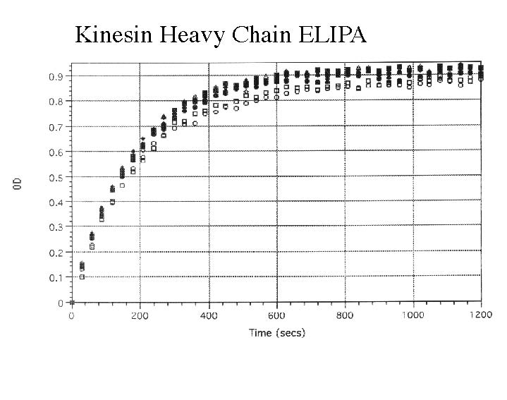 Kinesin-Heavy-Chain-ELIPA