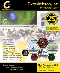 MCat-2019-Cover-THumb