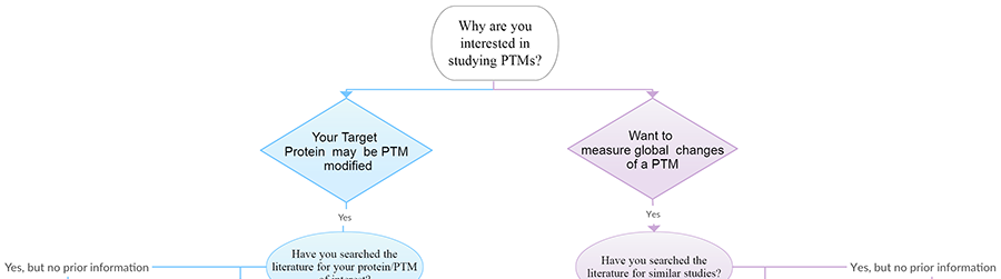How To Study Ptms A Guide For New Ptm Investigators