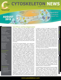Rabs-and-Neurodegeneration-August-2018-Newsletter-V2-Sm-Thumb