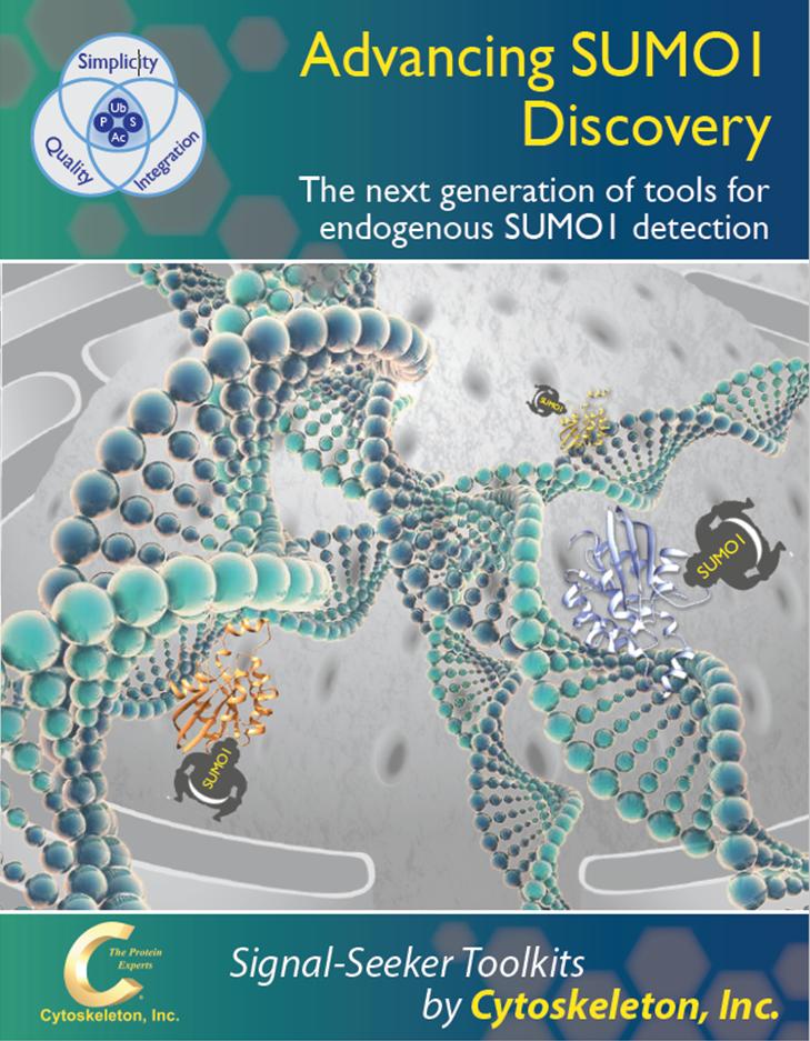SUMO1_brochure_cover