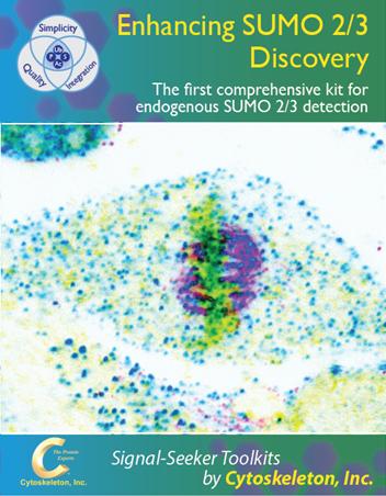 SUMO2_Brochure_Cover