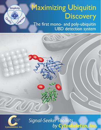 Ub_Brochure_Cover