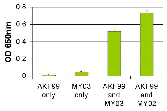 AKF99_ATPase