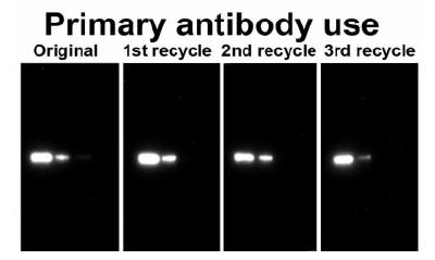 antibody-recycling