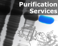 Purification Services