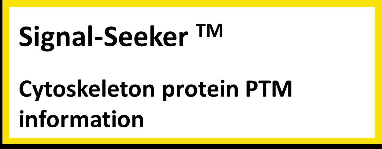 cytoskeleton protein PTMs