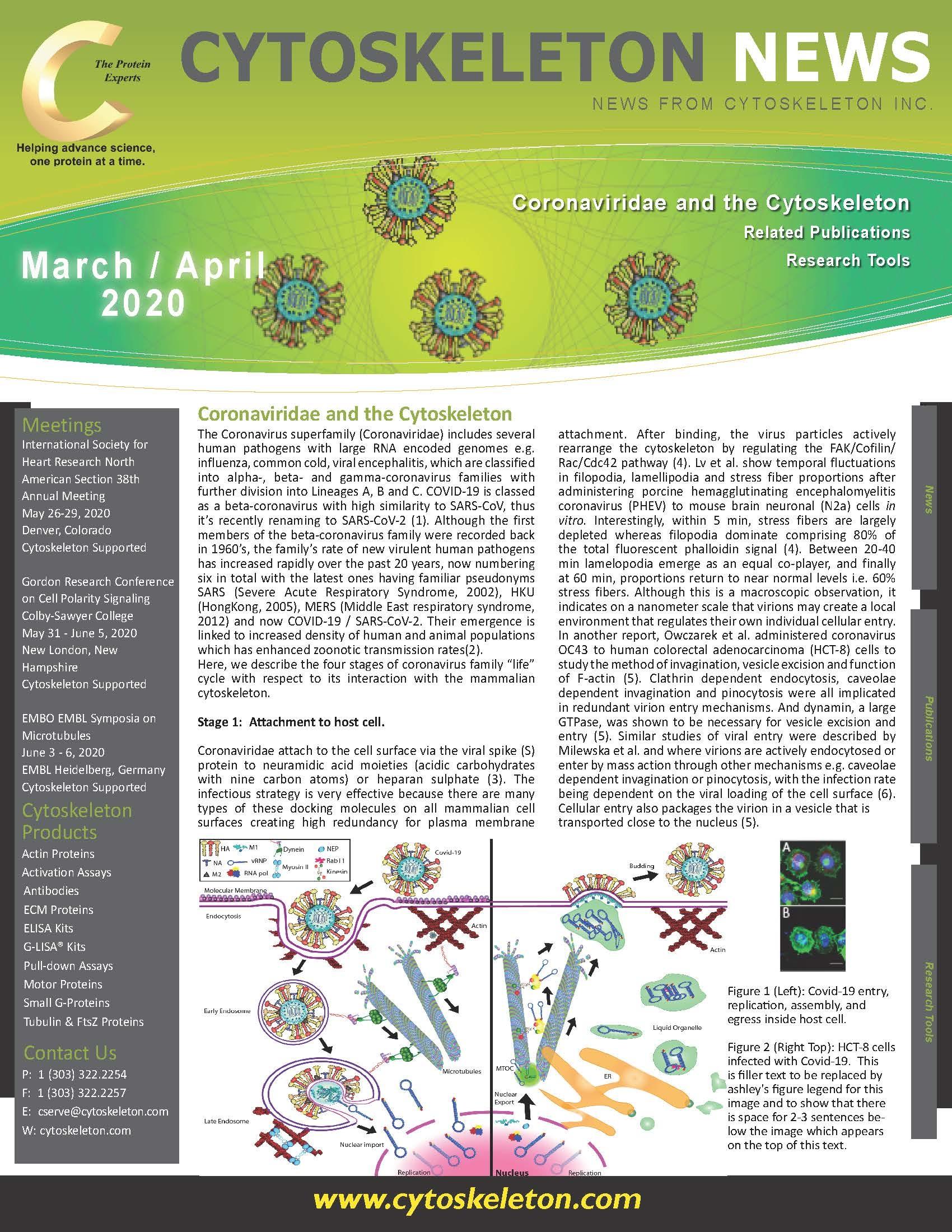 Coronavirus Newsletter Thumb