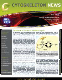 Actin Oxidation News