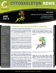 Arf Protein News