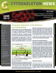 Fibronectin-Newsletter-Image
