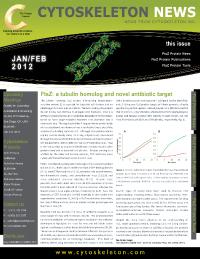 FtsZ Protein News