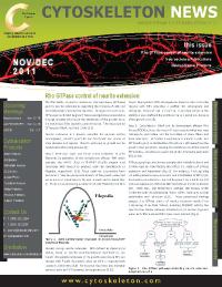 Neuroscience-News
