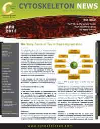 Tau in Neurodegeneration