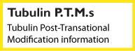 Tubulin PTM